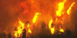 brush fires2