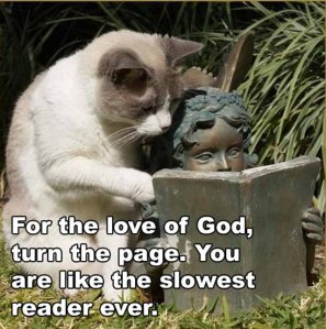 turn-the-page