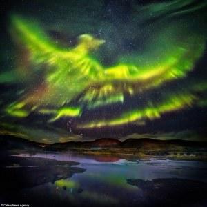 phoenix iceland
